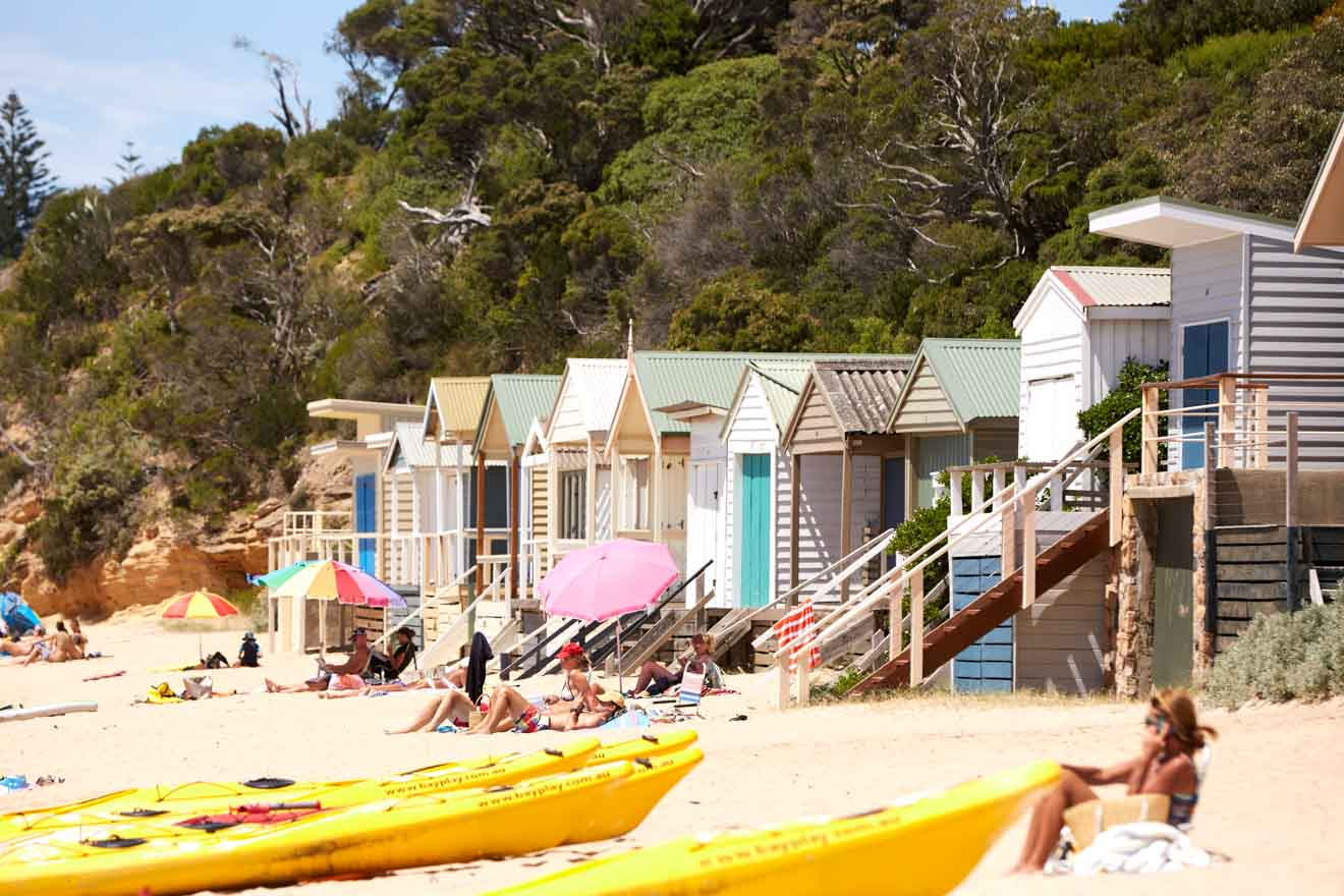 mornington peninsula accommodation - Bathing Boxes Things to do in Mornington Peninsula