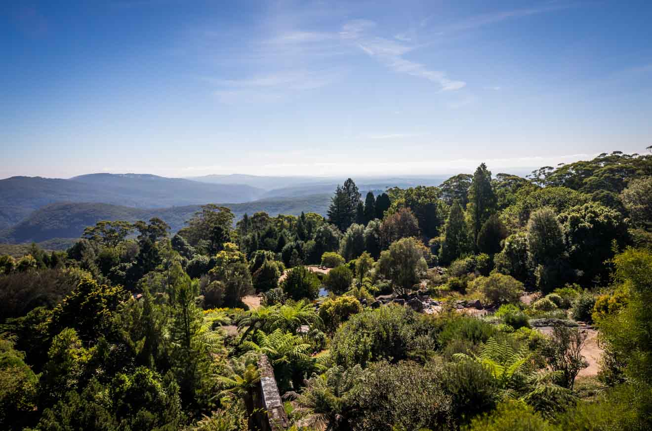 things to do in Blue Mountains Botanic Garden