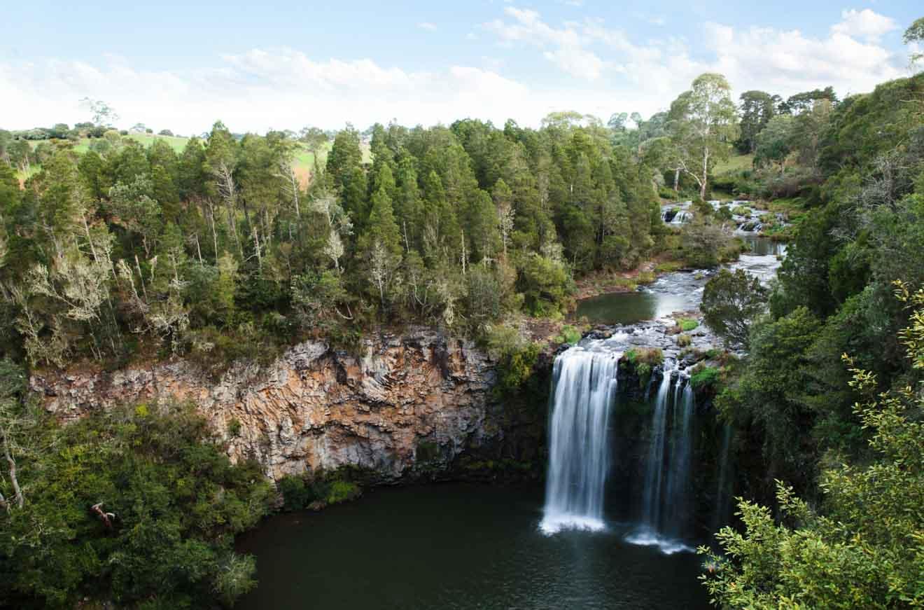 Dangar Falls, Dorrigo located on the North Coast. Coffs Harbour Dangar Falls