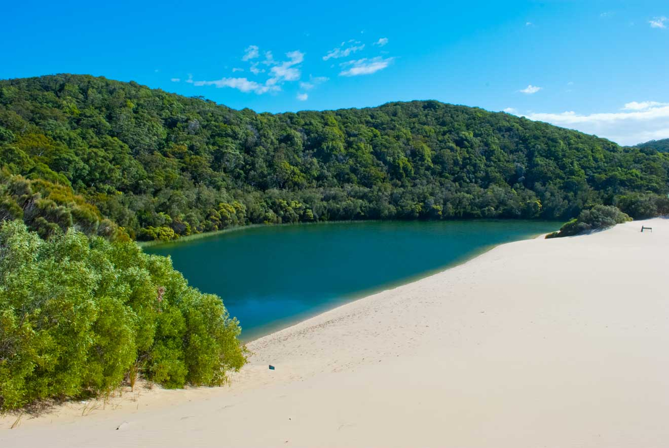 incredible coast things to do in fraser island