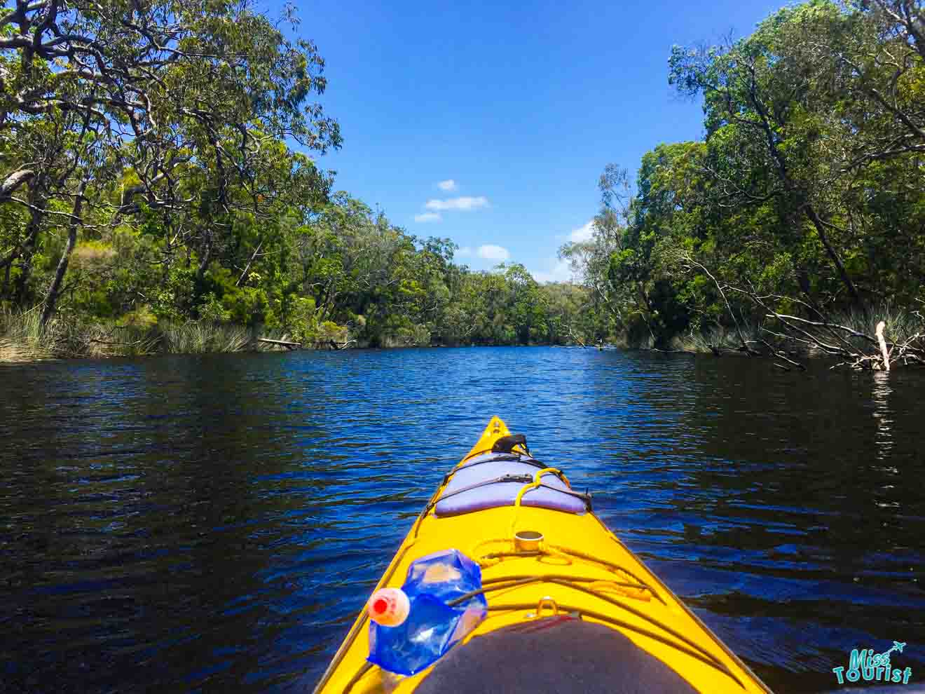 kayak things to do in sunshine coast