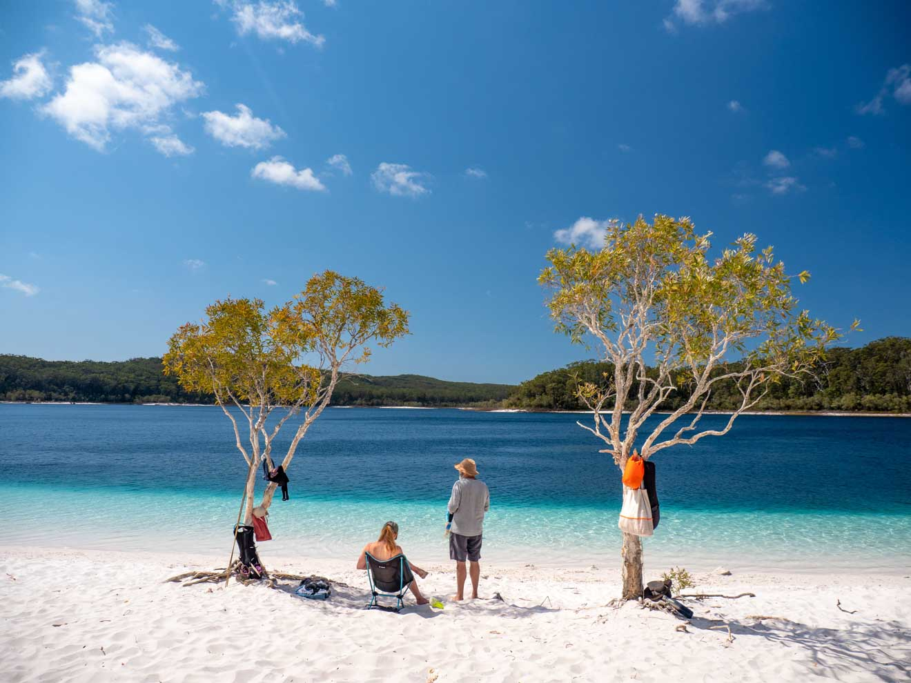 lake mckenzies things to do in sunshine coast