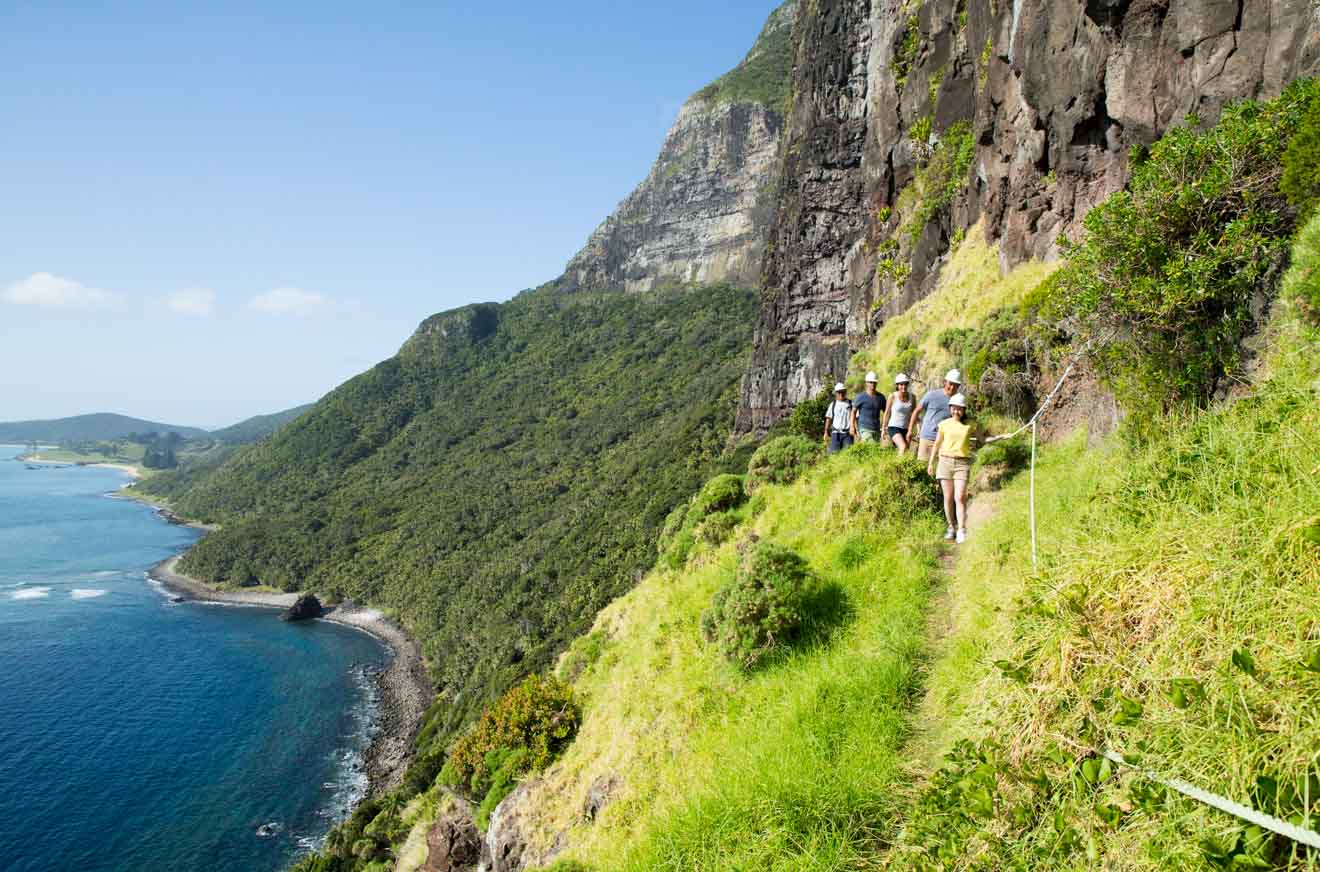 Mount Gower Lord Howe Island trails hiking