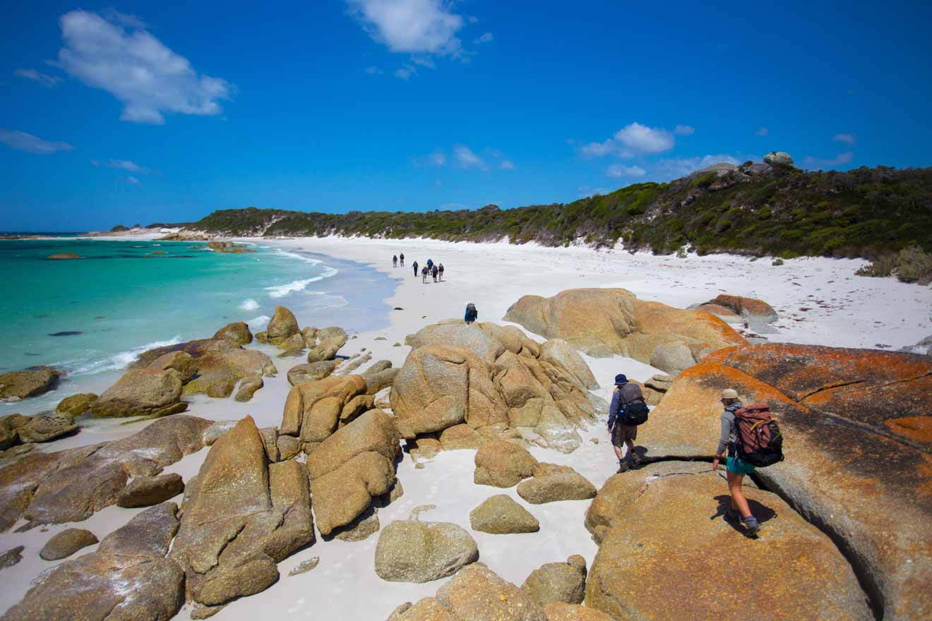 Mt William National Park Bay of Fires walks and hiking tour