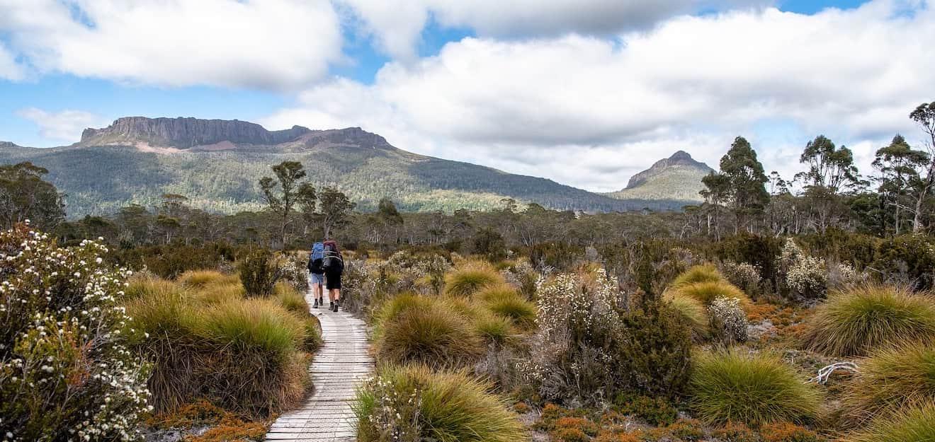 Overland track in tasmania australia full guide to visit