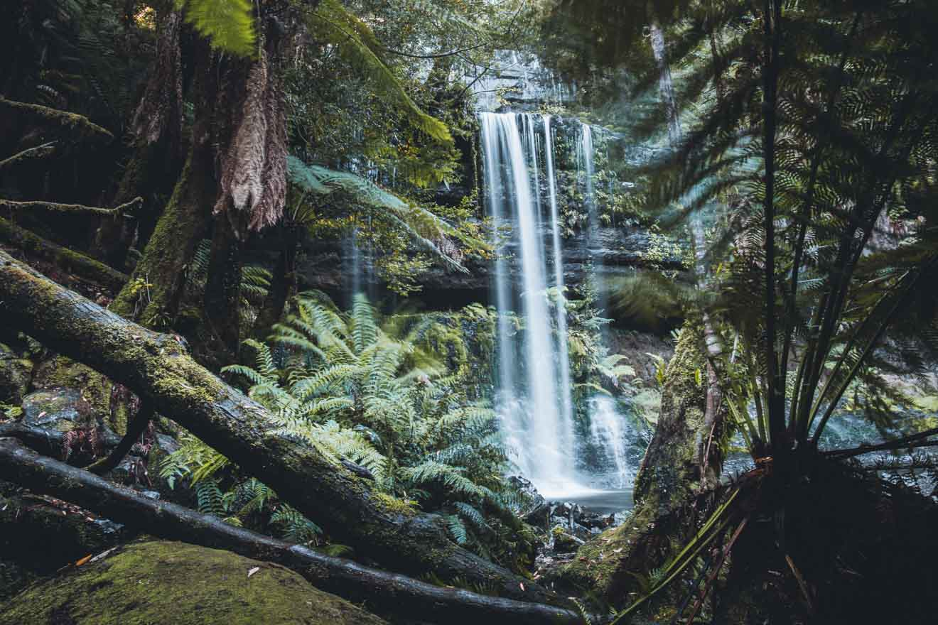 Russell Falls Mt Field National Park tasmania tourist attraction