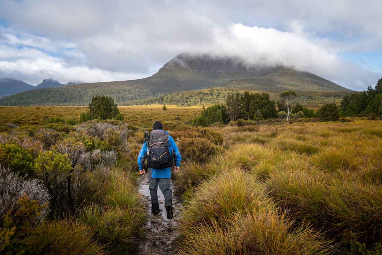 Walking towards Mt Pelion West, Overland Track - a self guided tour