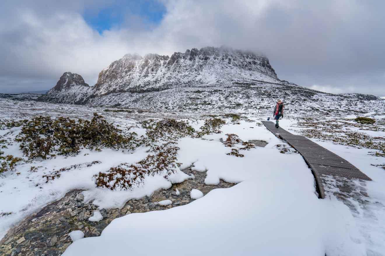 Winter on the Overland Track Walk