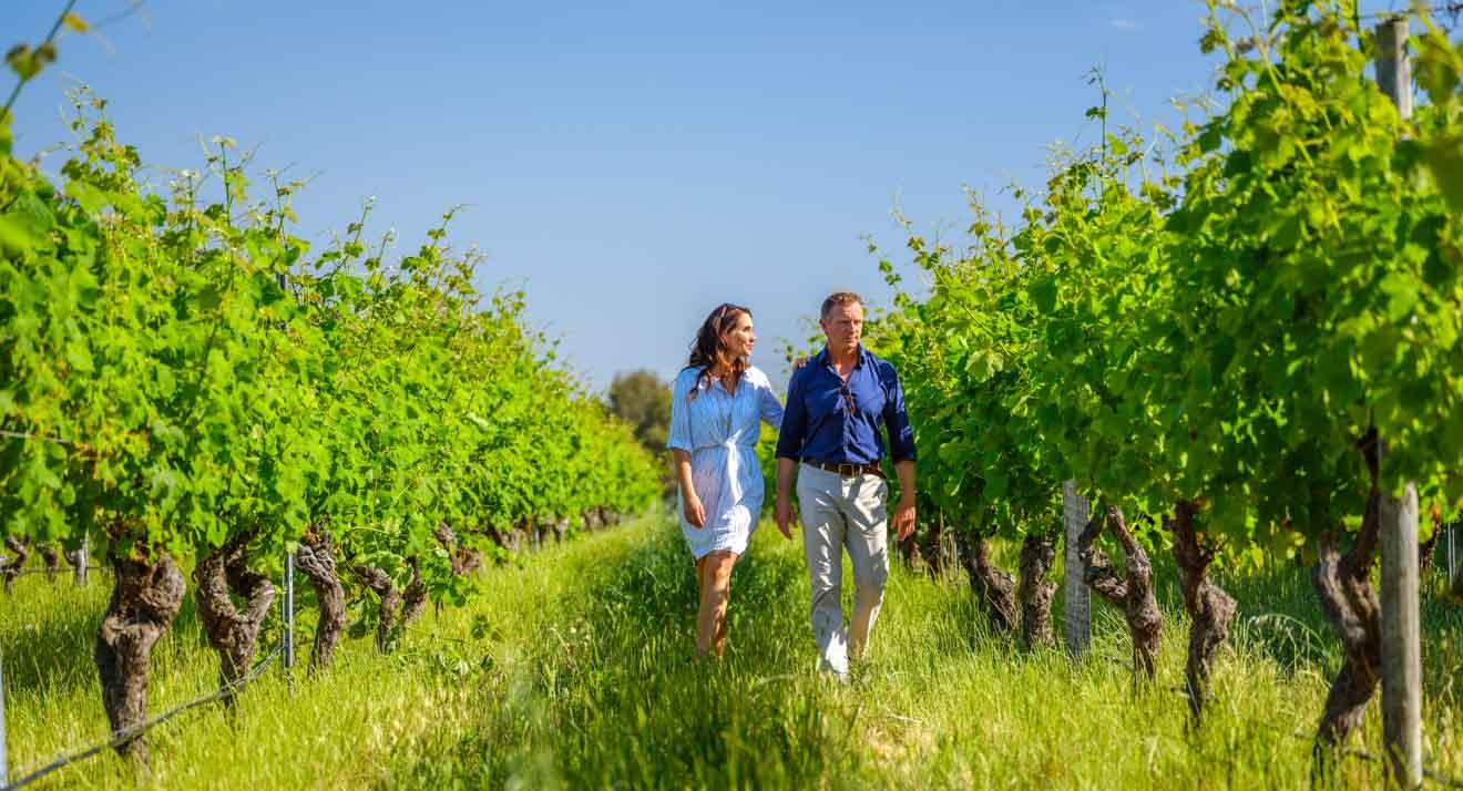 leeuwin estate, Amelia Park Wines Margaret River Wineries