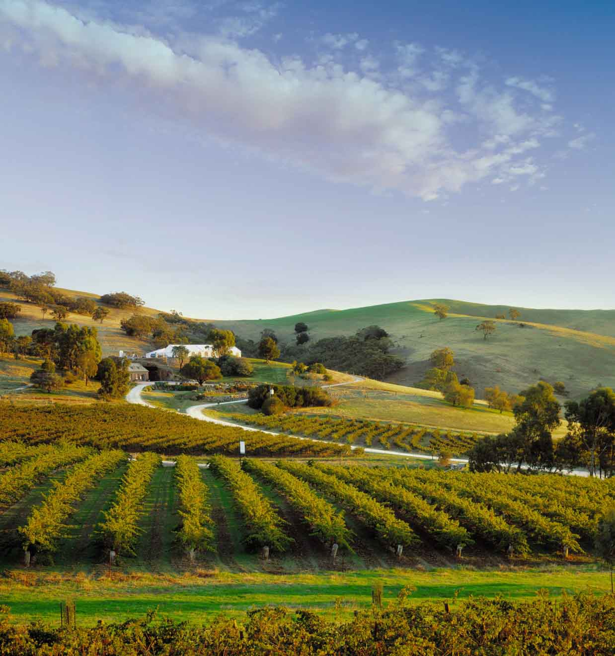 2 day itinerary barossa valley - Bethany Wines Things to do in Barossa Valley Wineries