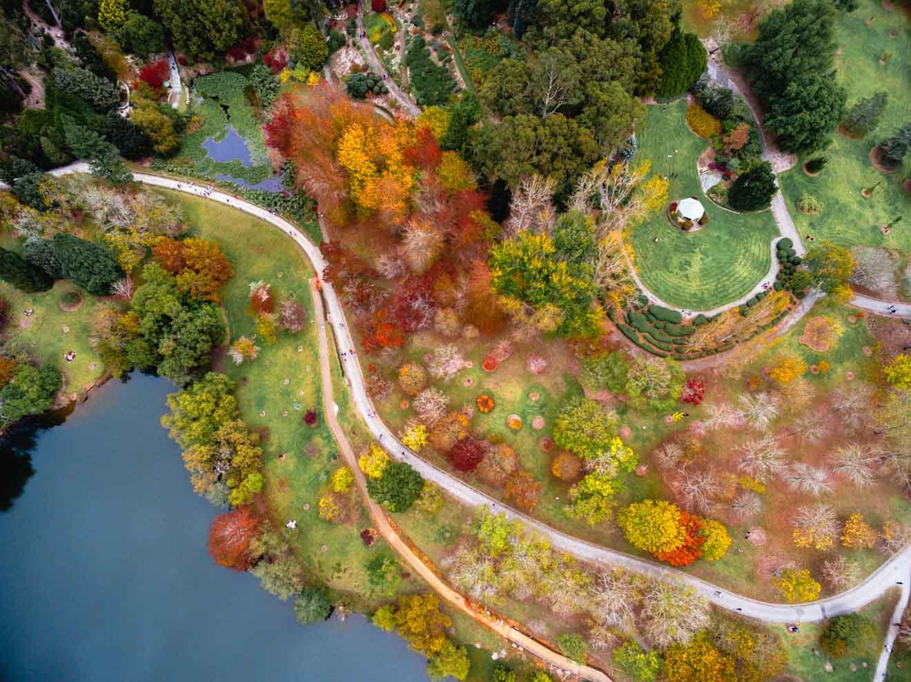 Romantic Getaways Adelaide - Botanic Garden Day trips from Adelaide