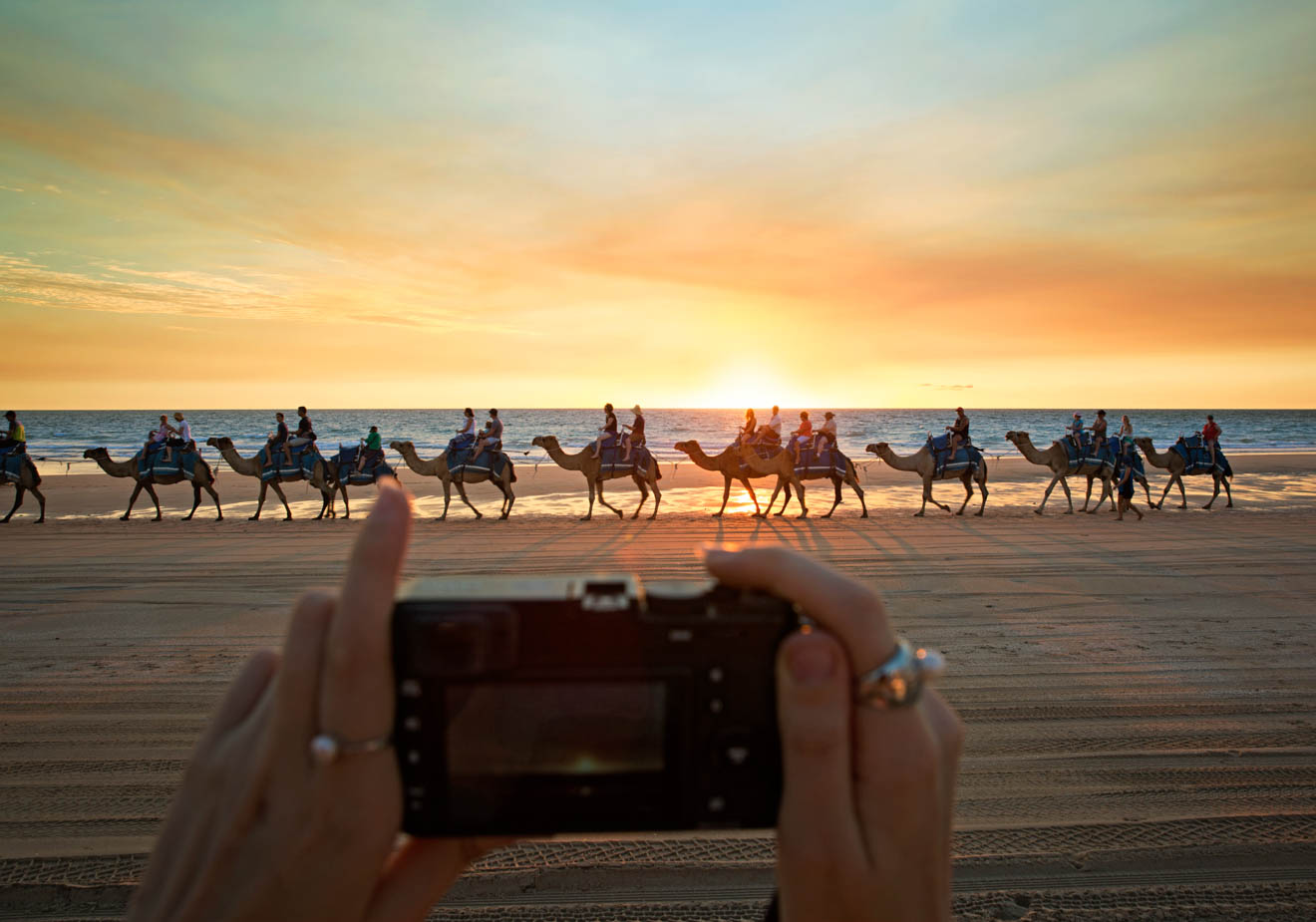 Camels at sunset free Things to Do in Broome