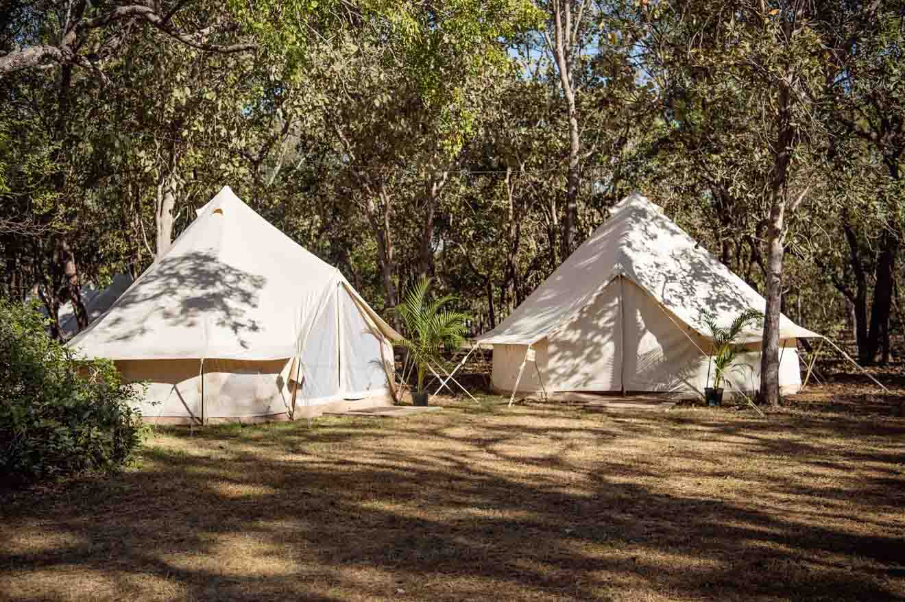 Flash Camp Things to do in Kakadu national park accommodation
