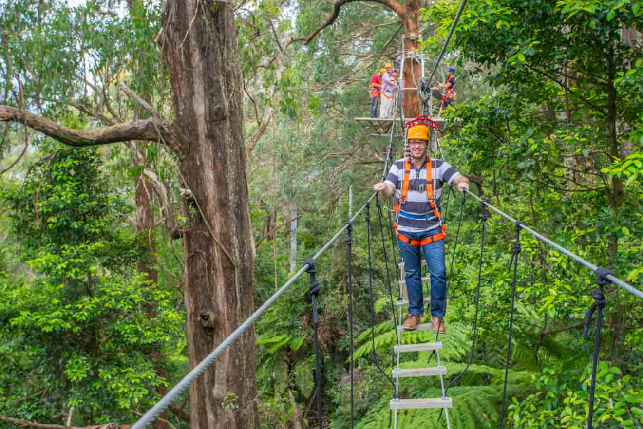 wollongong experiences - Illawarra region Things to do in Wollongong