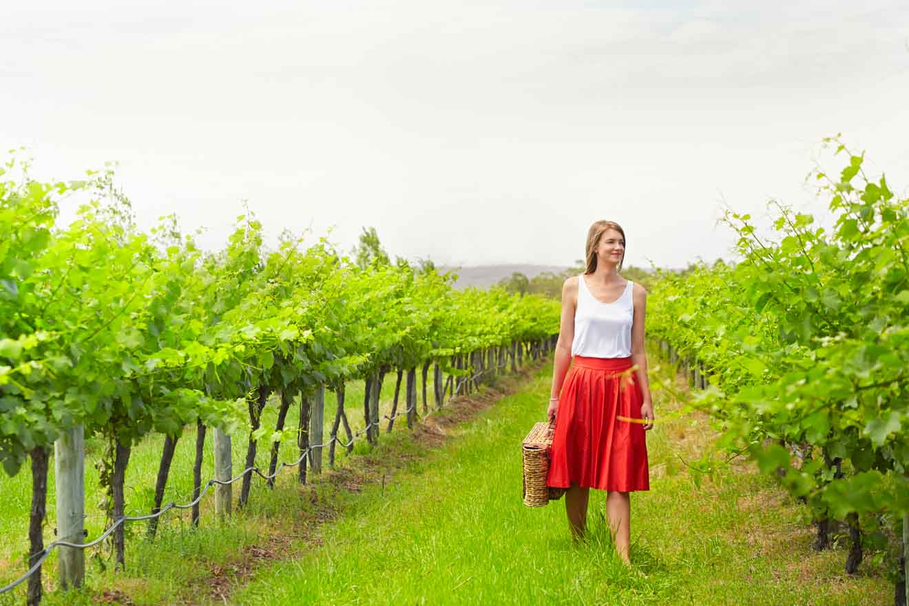Lancaster Wines, best swan valley wineries