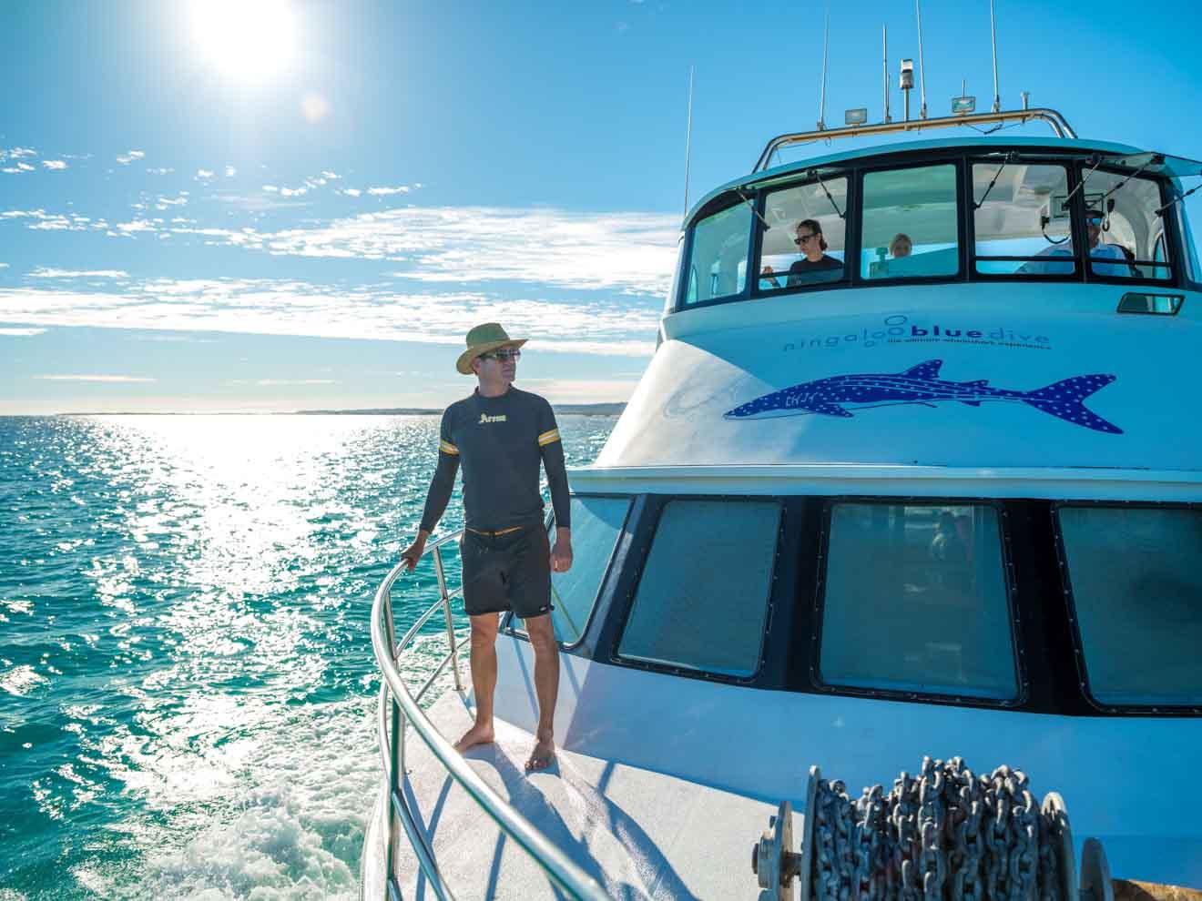 Marine Park Whale sharks Ningaloo reef tours