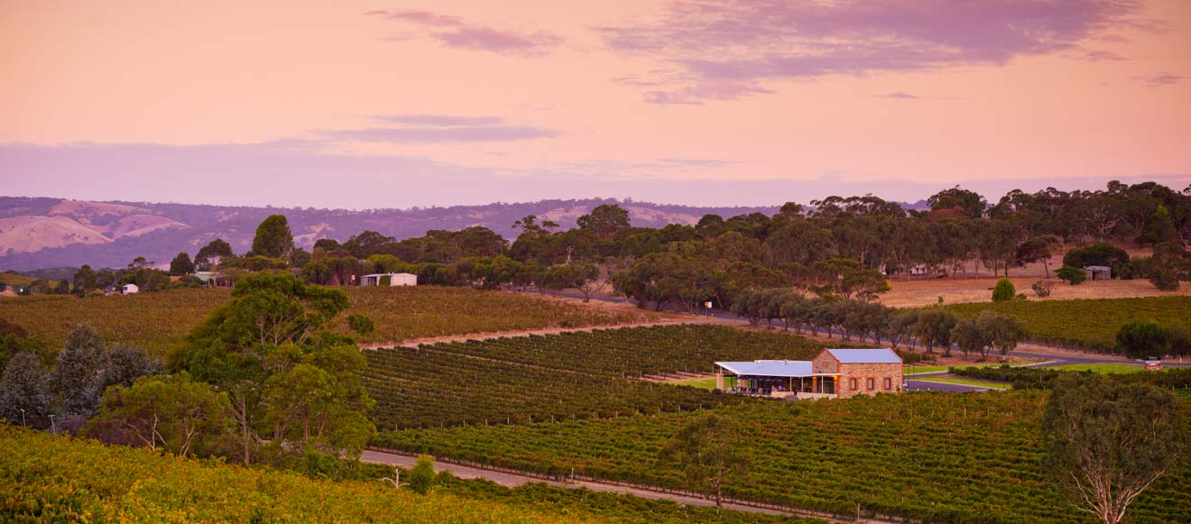 weekends in adelaide - McLaren Vale Day trips from Adelaide