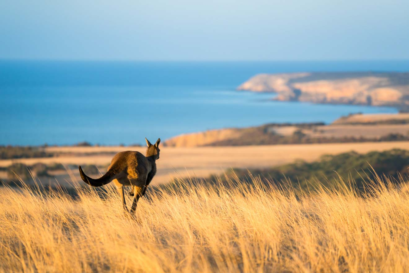 adelaide escapes - Middle River Day trips from Adelaide