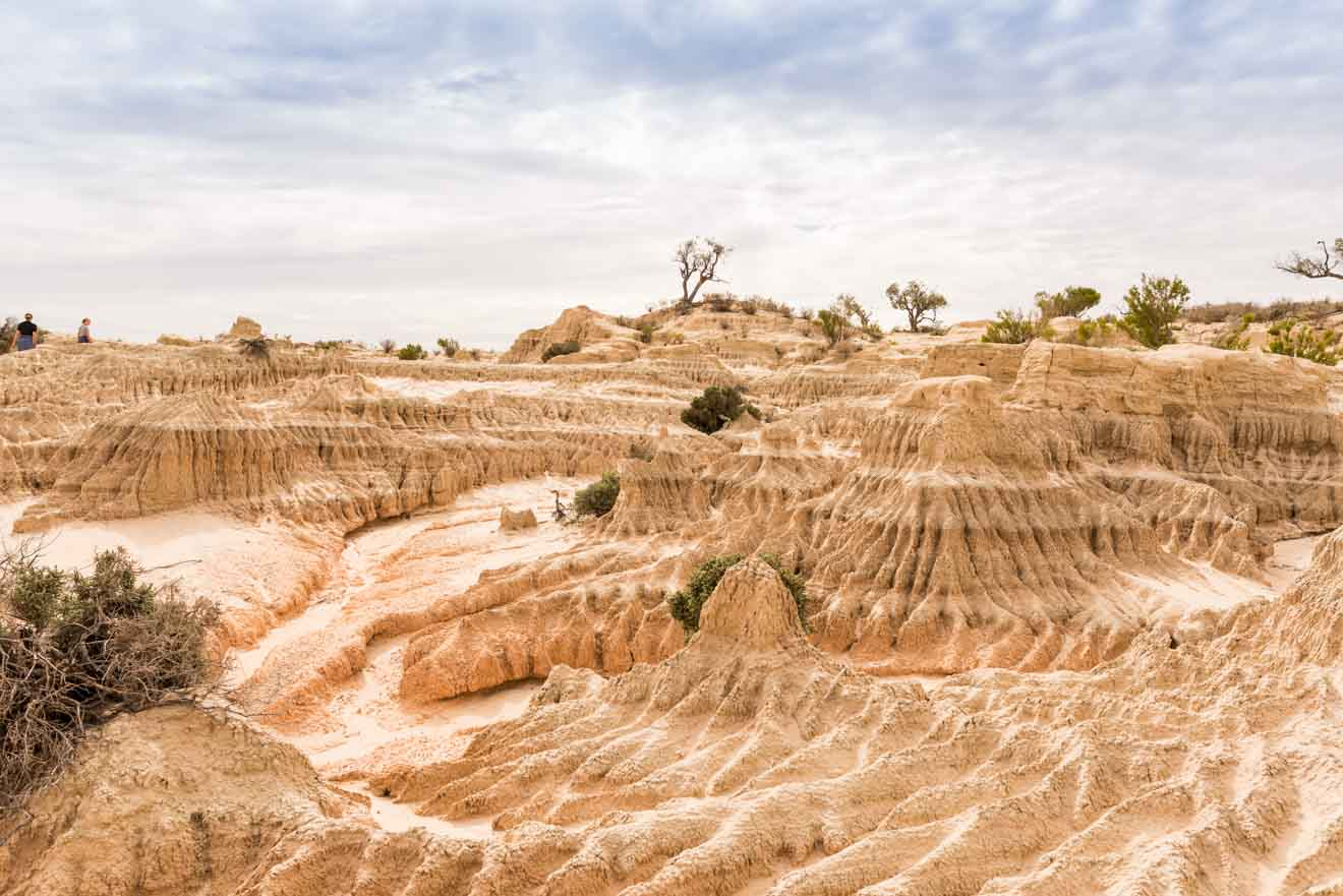 Mildura information - Mungo National Park Things to do in Mildura