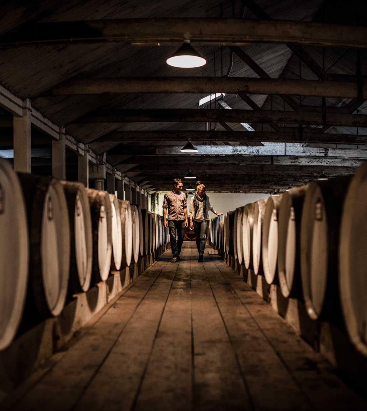 barossa valley wineries - Seppeltsfield Winery, Barossa Valley, SA