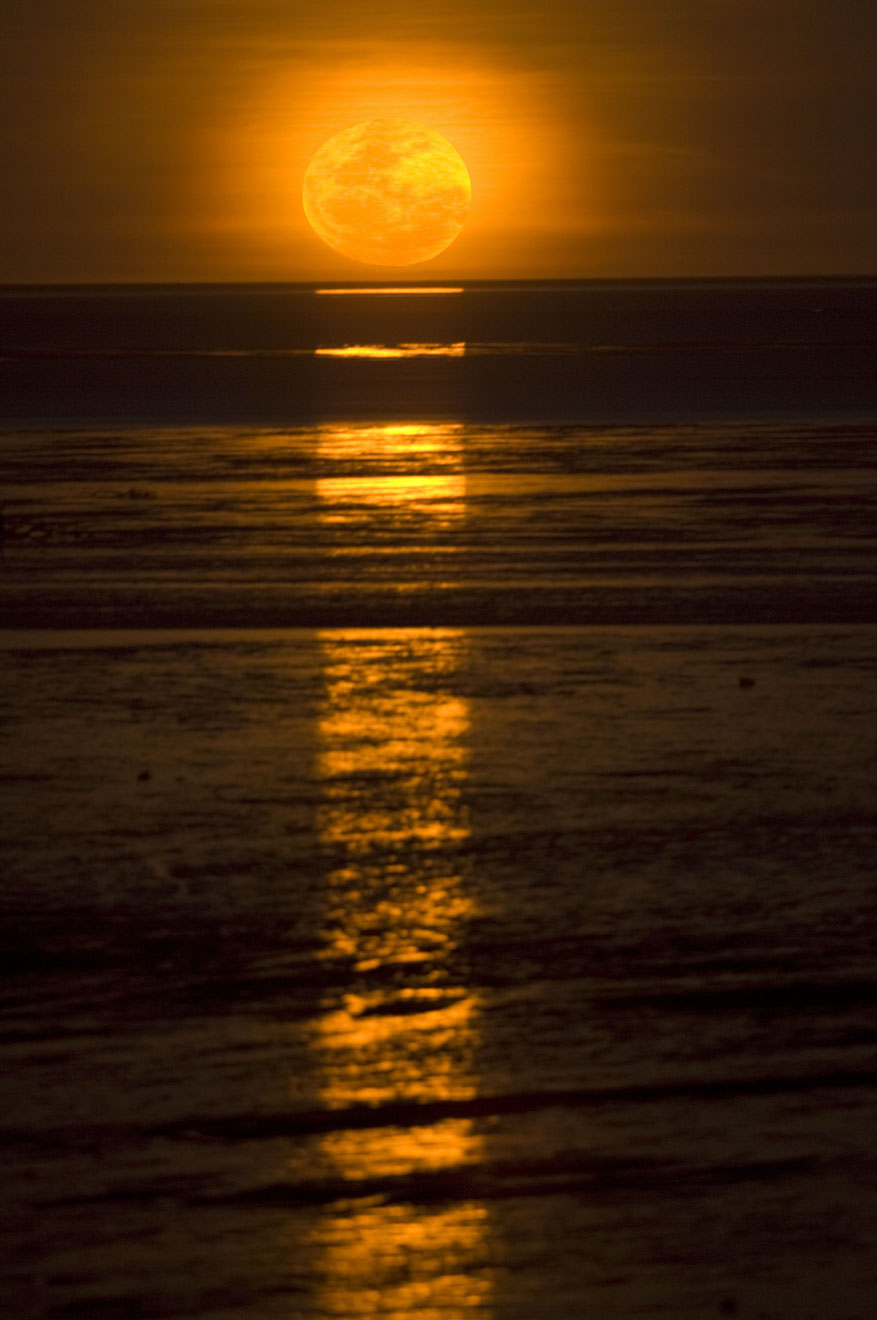 Staircase to the Moon phenomenon Things to Do in Broome in Western Australia
