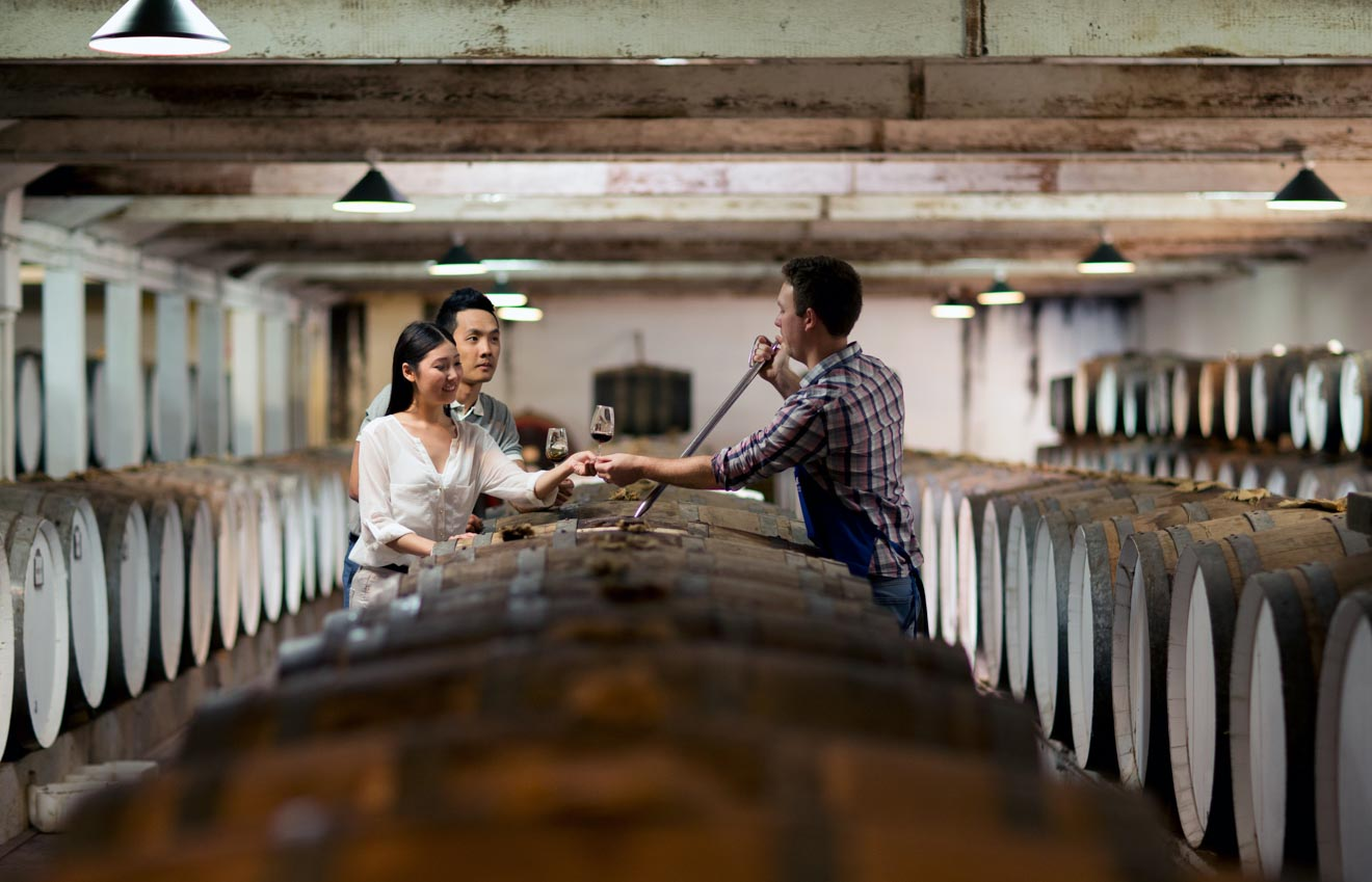 barossa valley wineries - The Centennial Cellar at Seppeltsfield Wines, Barrossa Valley, S