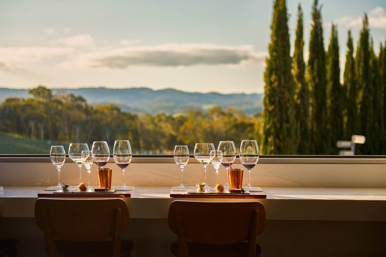 barossa valley wine tasting - The Lane Vineyard Things to do in Barossa Valley Wineries