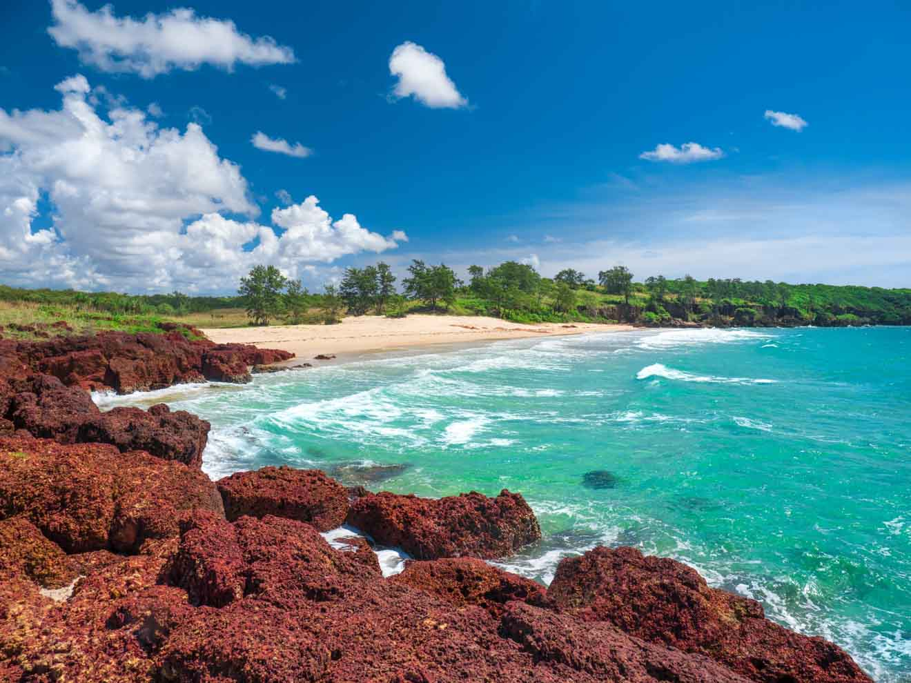 Tropical paradise in East Arnhem Land where to go