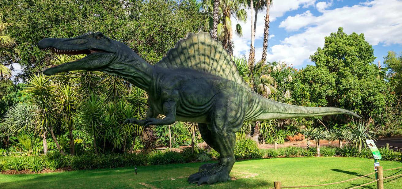 Visit the Animals at Perth Zoo