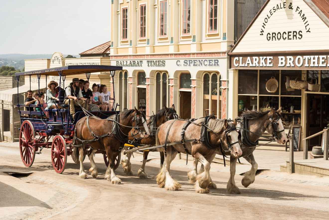 coach unusual things to do in ballarat