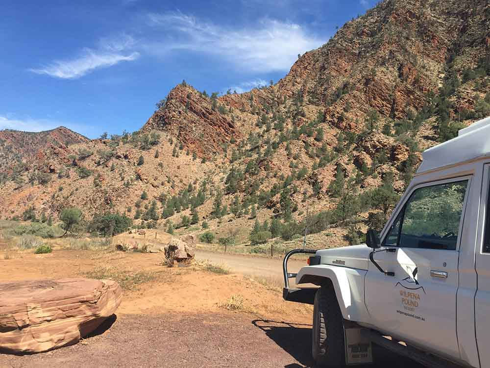 Wilpena Pound Resort, SA holiday packages