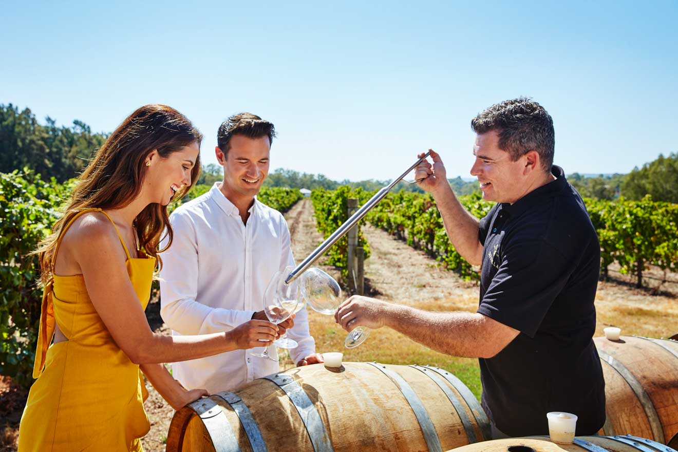 d'vine wine tours - Swan Valley, near Perth