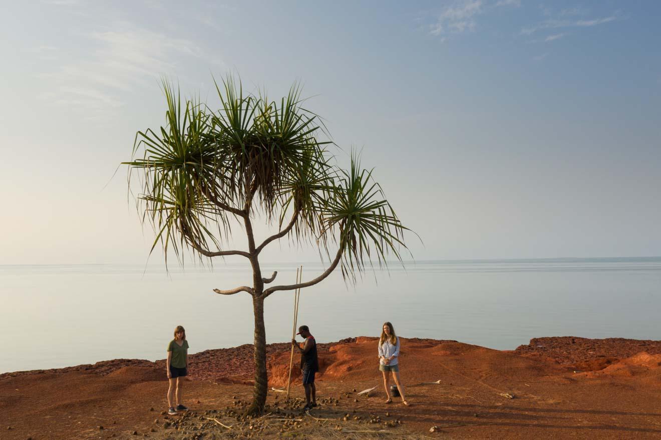 palm Arnhem Land permit to tour